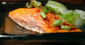 picture of steelhead  - Glass plate with a steelhead salmon fillet and steamed summer squash - JPG