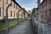 Barbed Wire Fence In Auschwitz Ii Concentration Camp In Poland