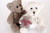 Teddy Bear Family 0002