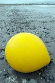 Big Yellow Buoy