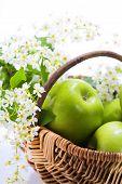 Постер, плакат: Зеленое яблоко с цветами