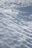 Light And Shadows On The Snow