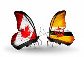 Two Butterflies With Flags On Wings As Symbol Of Relations Canada And Brunei