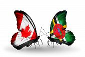 Two Butterflies With Flags On Wings As Symbol Of Relations Canada And Dominica