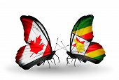 Two Butterflies With Flags On Wings As Symbol Of Relations Canada And Zimbabwe