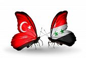 Two Butterflies With Flags On Wings As Symbol Of Relations Turkey And Syria