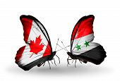 Two Butterflies With Flags On Wings As Symbol Of Relations Canada And Syria