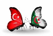 Two Butterflies With Flags On Wings As Symbol Of Relations Turkey And Algeria