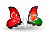 Two Butterflies With Flags On Wings As Symbol Of Relations Turkey And  Niger