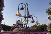 Flower Park in Dubai (Dubai Miracle Garden). United Arab Emirates.