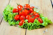 picture of plum tomato  - Tiny plum tomatoes on salad leaf on table - JPG