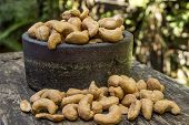 Cashew Nuts And Ceramic Bowl