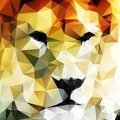 pic of lions-head  - Abstract vector drawing of a lion - JPG
