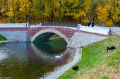 Belarus, Gomel, The Swan Pond In The Autumn Park