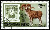 Vintage  Postage Stamp. Argali And Canada.