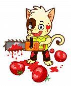 Tomato Maniac Kitten