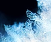 Ice Crystal Formations Macro