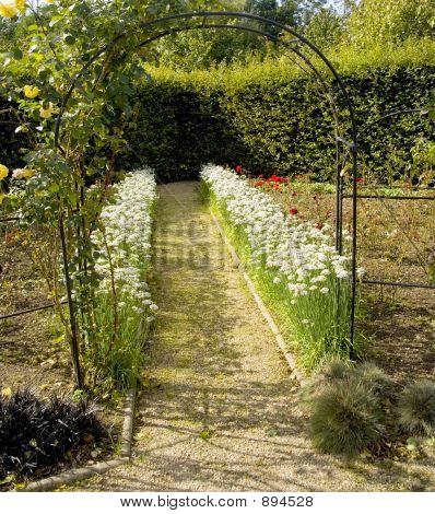 poster of Garden Organic Ryton Ryton Gardens Warwickshire Midlands England