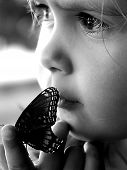 Beauty And The Butterfly