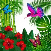 picture of colibri  - Tropical floral design background with bird - JPG