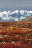 The Kangia Icefjord