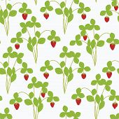 picture of strawberry plant  - Strawberry plant with berries vector seamless pattern - JPG