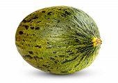 foto of muskmelon  - One Fresh whole Piel de sapo melon on white background - JPG