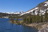 Tioga Pass landscape, Yosemite