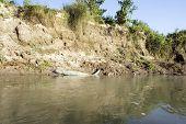 Parque Nacional de Chitwan, Nepal