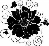 Elemento de Design, flores, ilustração