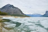 Icy Rocky Shore Line