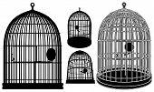 Bird Cage Vector 02.eps