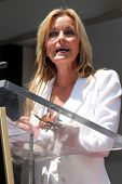 LOS ANGELES - JUN 2:  Bo Derek at the Shania Twain Hollywood Walk of Fame Star Ceremony at W Hotel S