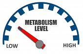 Metabolism Level poster