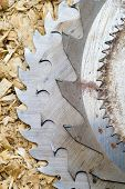 Sawblades from a circular saw on a sawdust