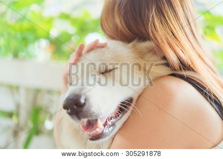 poster of Woman Hugging Her Dog Friendly Pet Closeup Big Dog,happiness And Friendship. Pet And Woman.