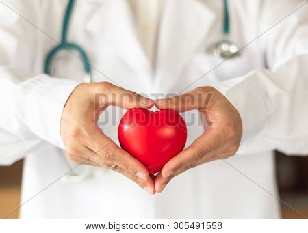 poster of Cardiovascular Disease Doctor Or Cardiologist Holding Red Heart In Clinic Or Hospital Exam Room Offi