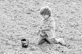 Boy Sit On Ground Planting Flower In Field. Fun Time At Farm. Gardening Concept. Child Having Fun Wi poster