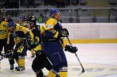 Eishockey-Aktion