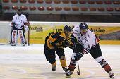 hockey action