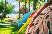 Tahiti vacation background saron pareo tahitian skirts flowing in the wind at beach resort souvenir  poster