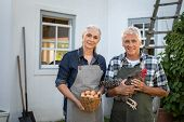 Portrait of happy farmers holding chicken and eggs outdoor. Senior man and mature woman in apron hol poster