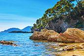 Coast With Huge Stones And Rock, Ligurian Coast Of Italy In Province Of La Spezia. Steep Coast. Rock poster