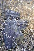 Big Ancient Stones