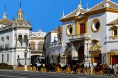 Bullring, Seville, Andalusia, Spain.