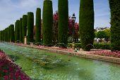 Gardens at the Alcazar in Cordoba, Spain