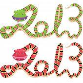 Snake Year 2013