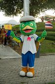 Man Dressed as Turtle, Thailand