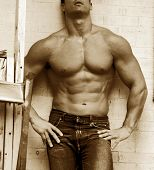 pic of adonis  - buff male body - JPG