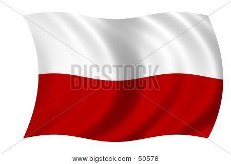 Flag Of Poland poster